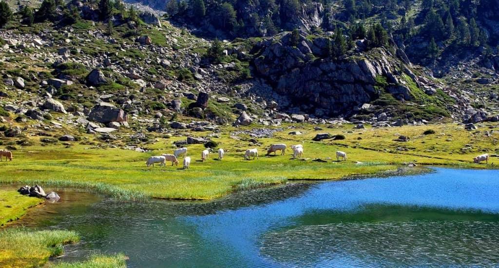 camping proche de l'étang de neouvielle